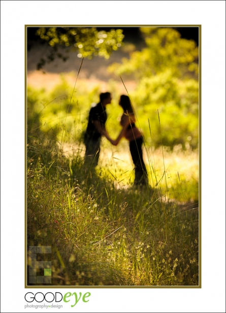 3918-d3_Stephanie_and_Kevin_Quicksilver_Park_San_Jose_Engagement_Photography_web
