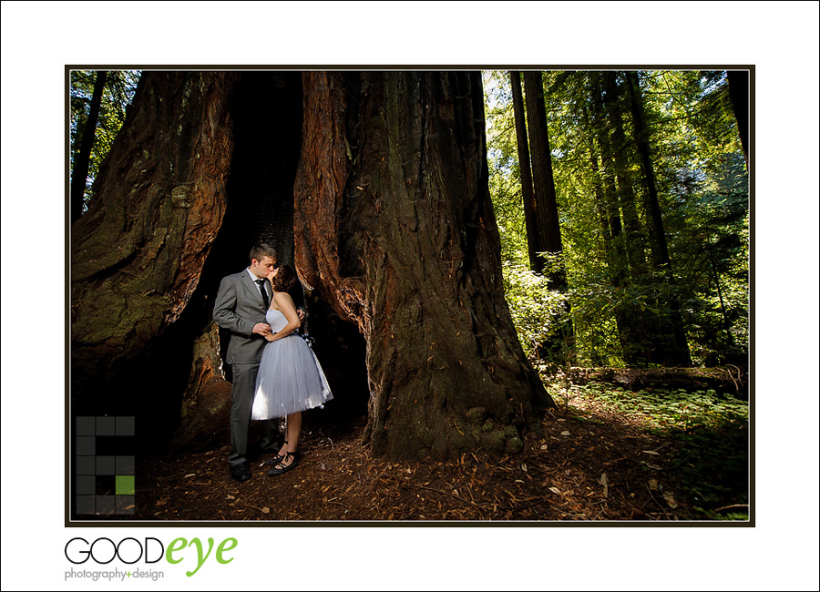 Katrina Barry Elopement Photography Henry Cowell