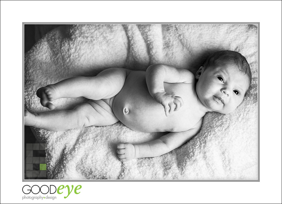 San Jose Newborn Photos