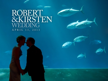 Monterey Bay Aquarium Wedding Photos - Bob and Kirsten