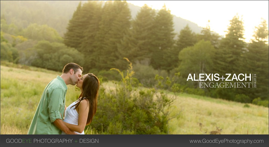 Henry Cowell Engagement Photos - Felton - Alexis and Zach - by Bay Area wedding photographer Chris Schmauch www.GoodEyePhotography.com
