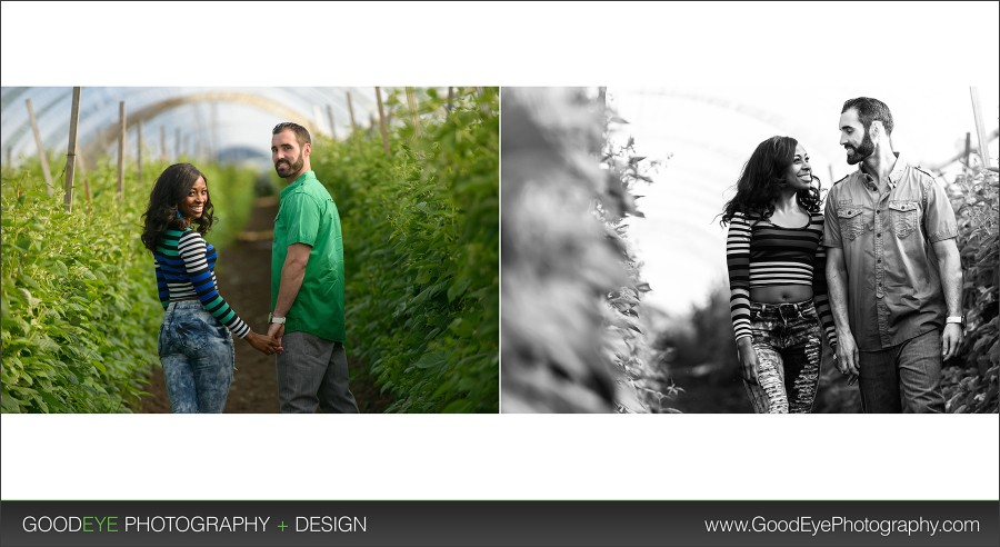Private Estate Engagement Photos - Watsonville - by Bay Area Wedding Photographer Chris Schmauch www.GoodEyePhotography.com